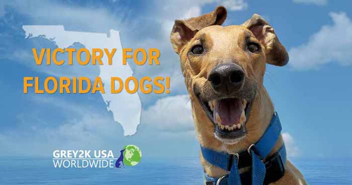Victory for Florida dogs!